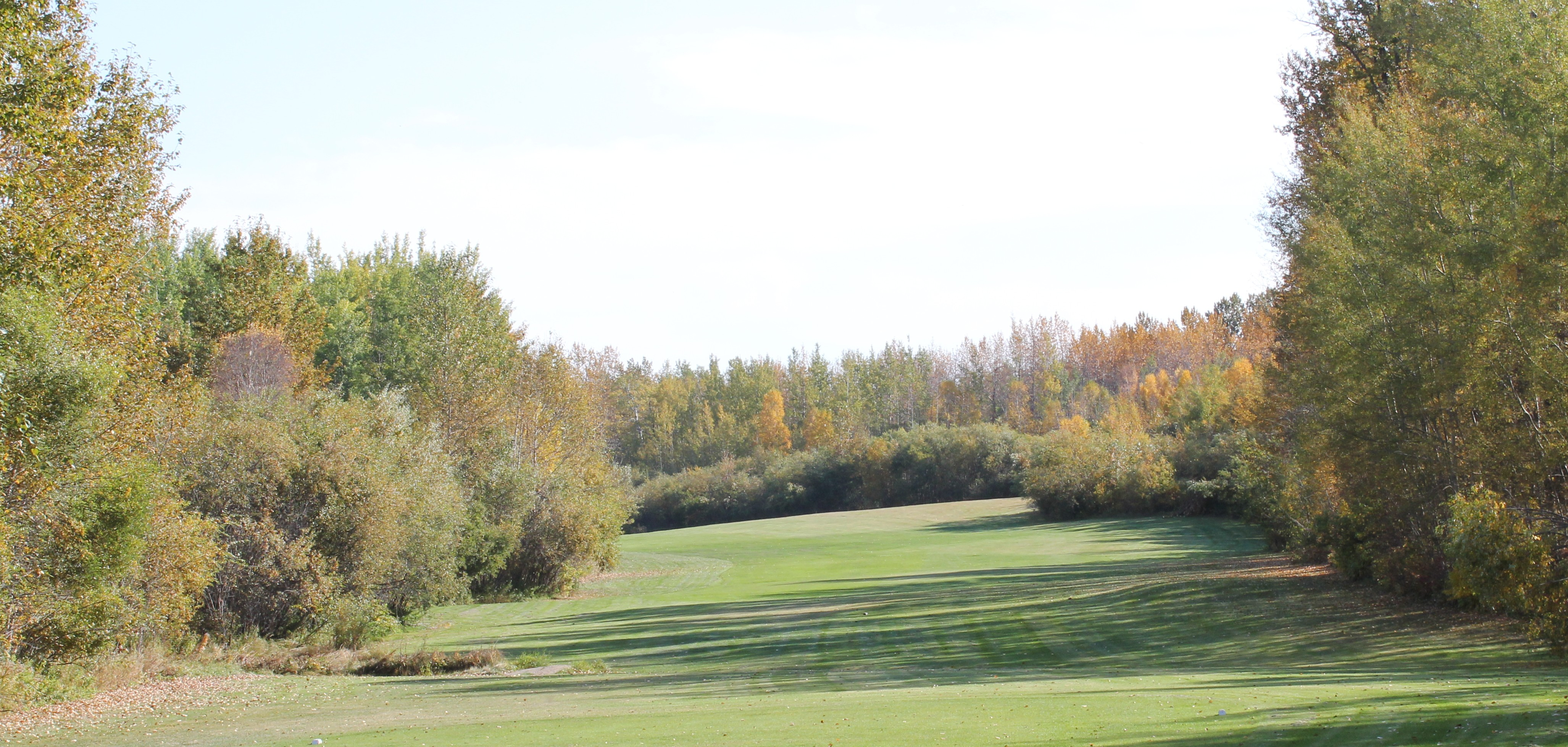 Our course offers some of the best golf holes you'll play